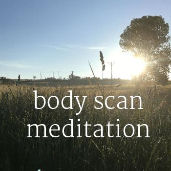 body scan album art